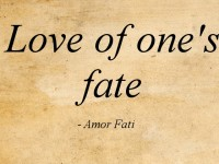 Learn to love your fate